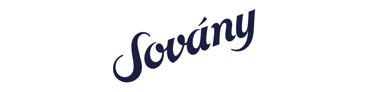 Sovany-selfless-love-foundation-gala-sponsor